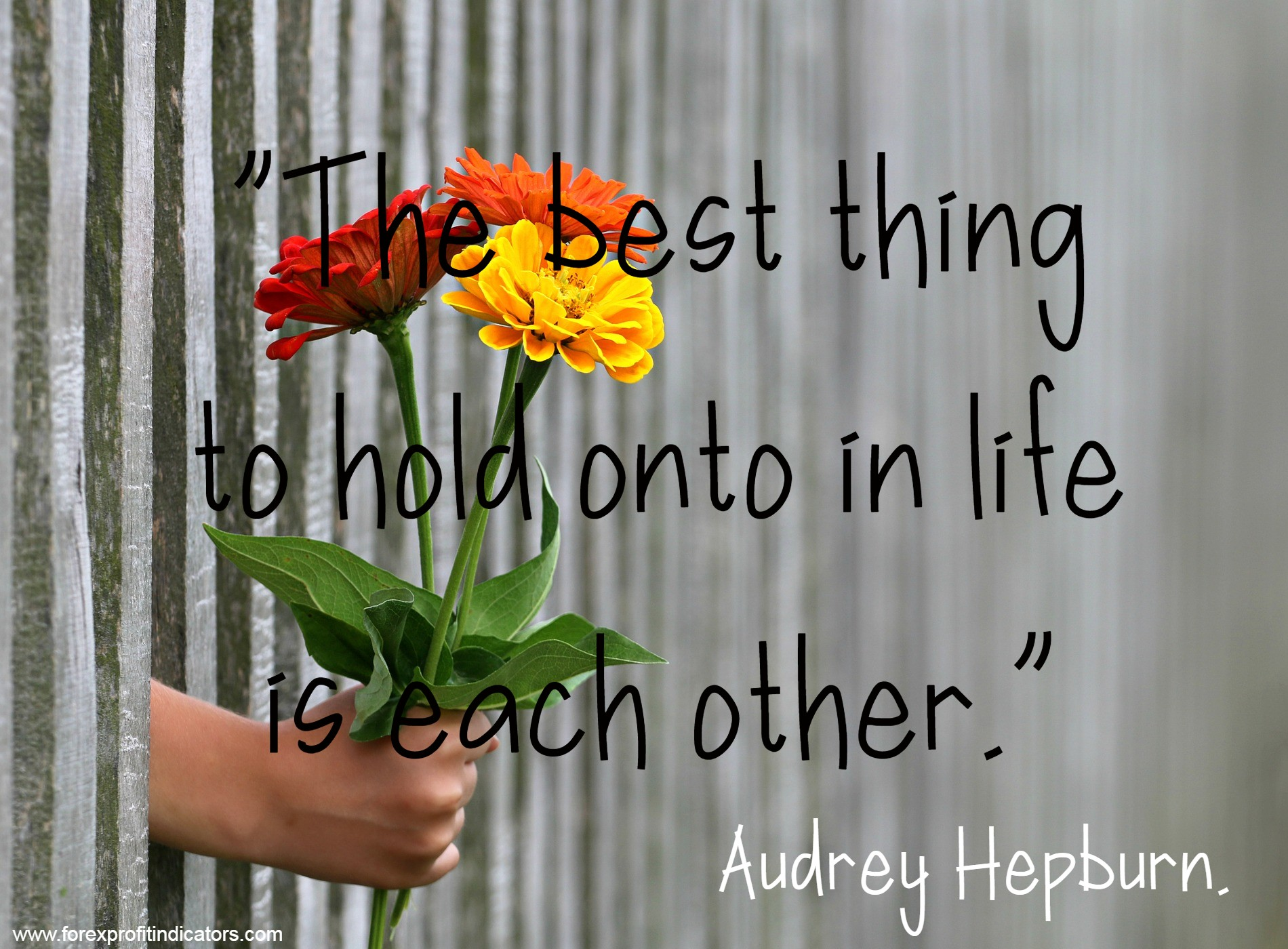 Free Download Best Love Quotes-16