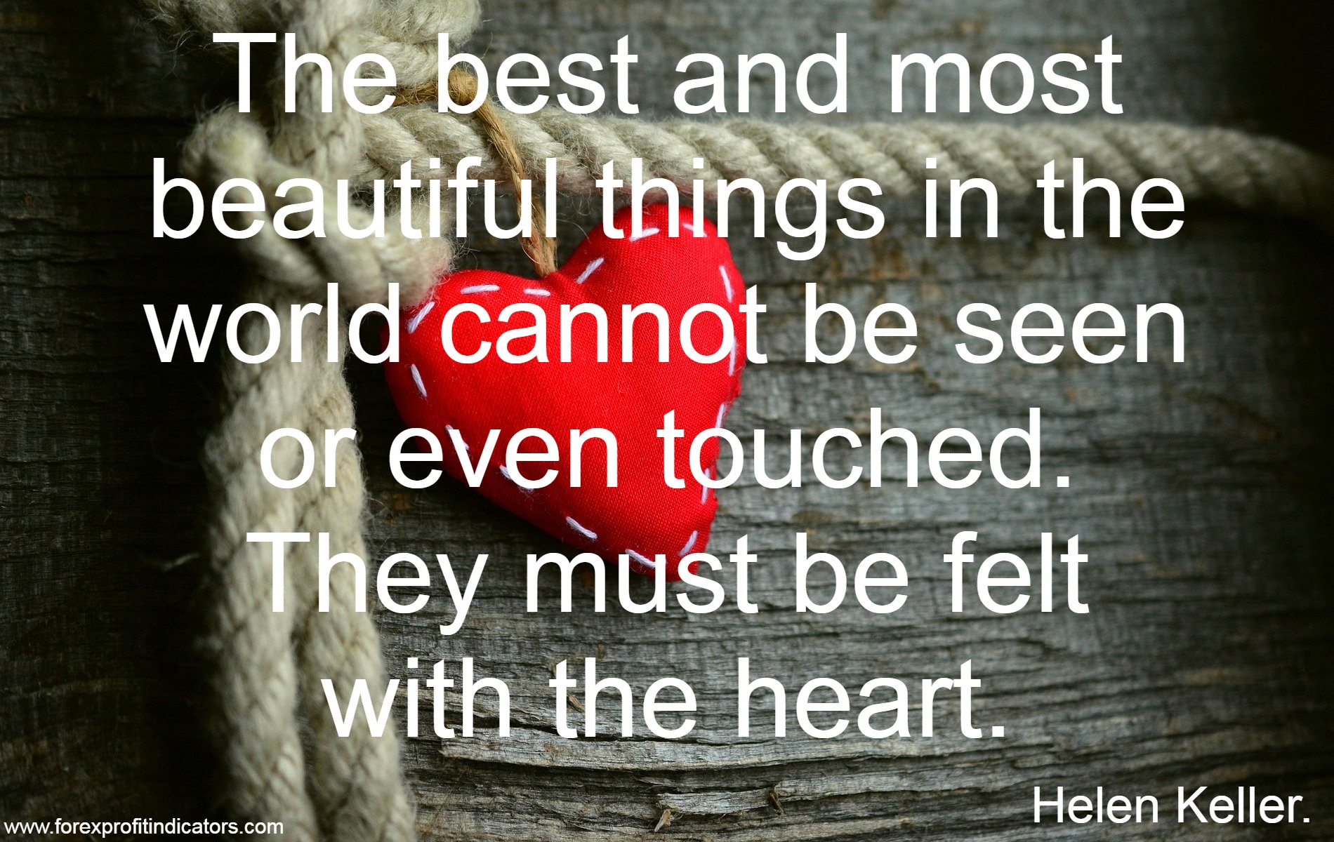 Free Download Best Love Quotes-24