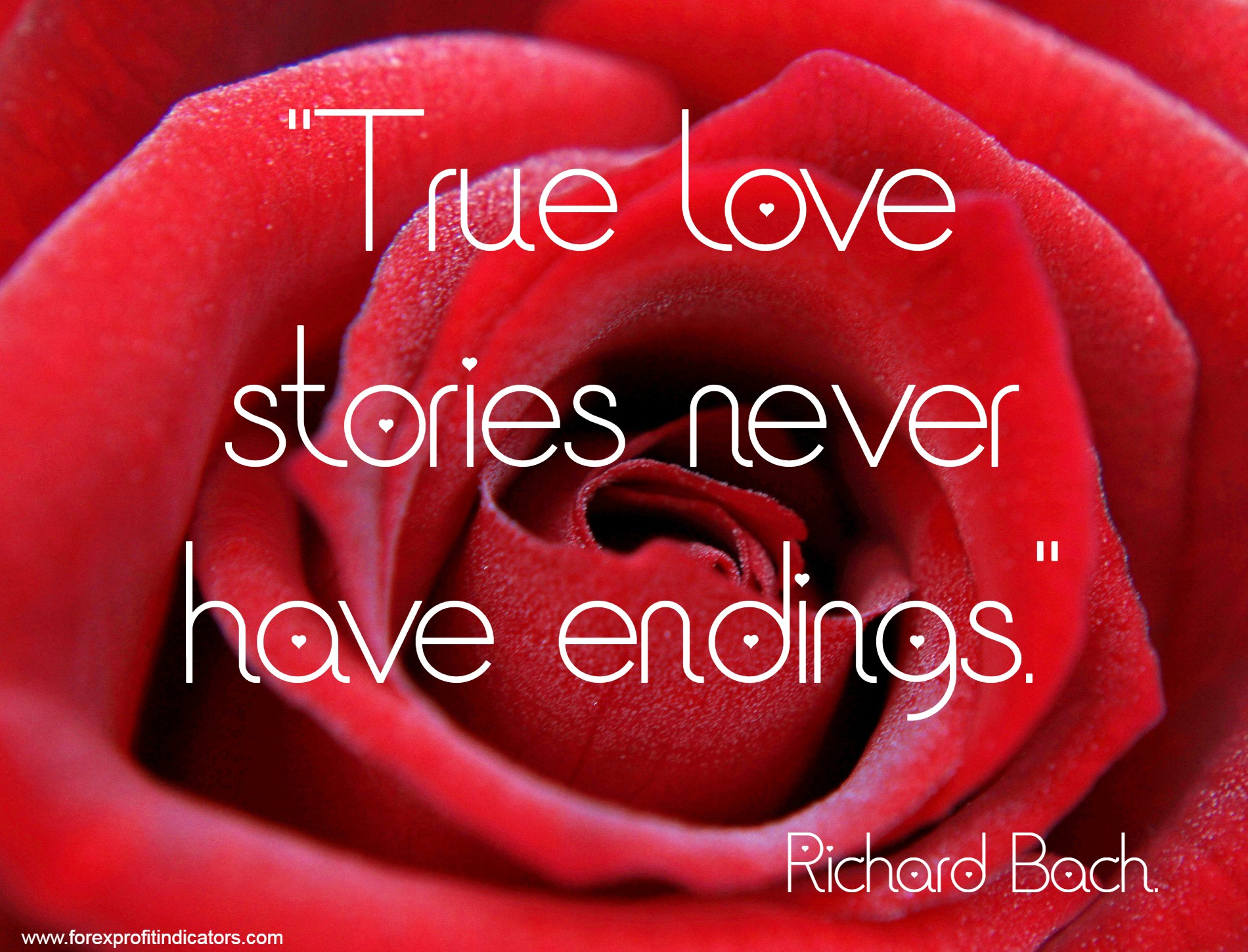 Free Download Best Love Quotes-43