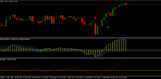 Forex-Double-MACD-Momentum-Trading-Strategy